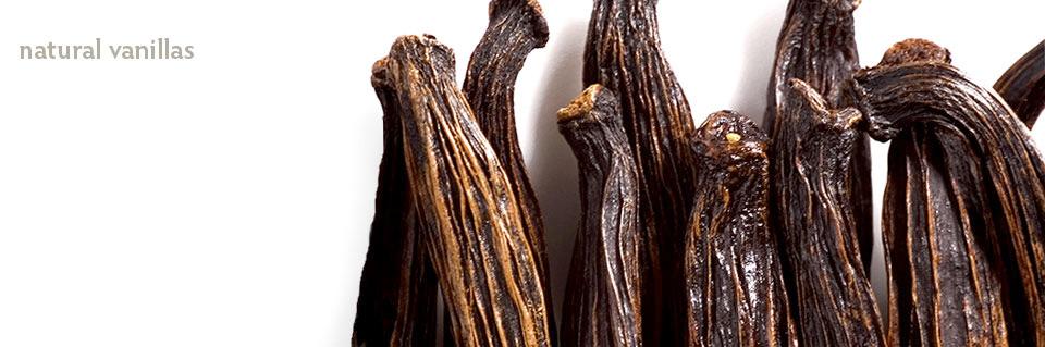 Wholesale Natural Madagascar Vanilla | Parker Flavors